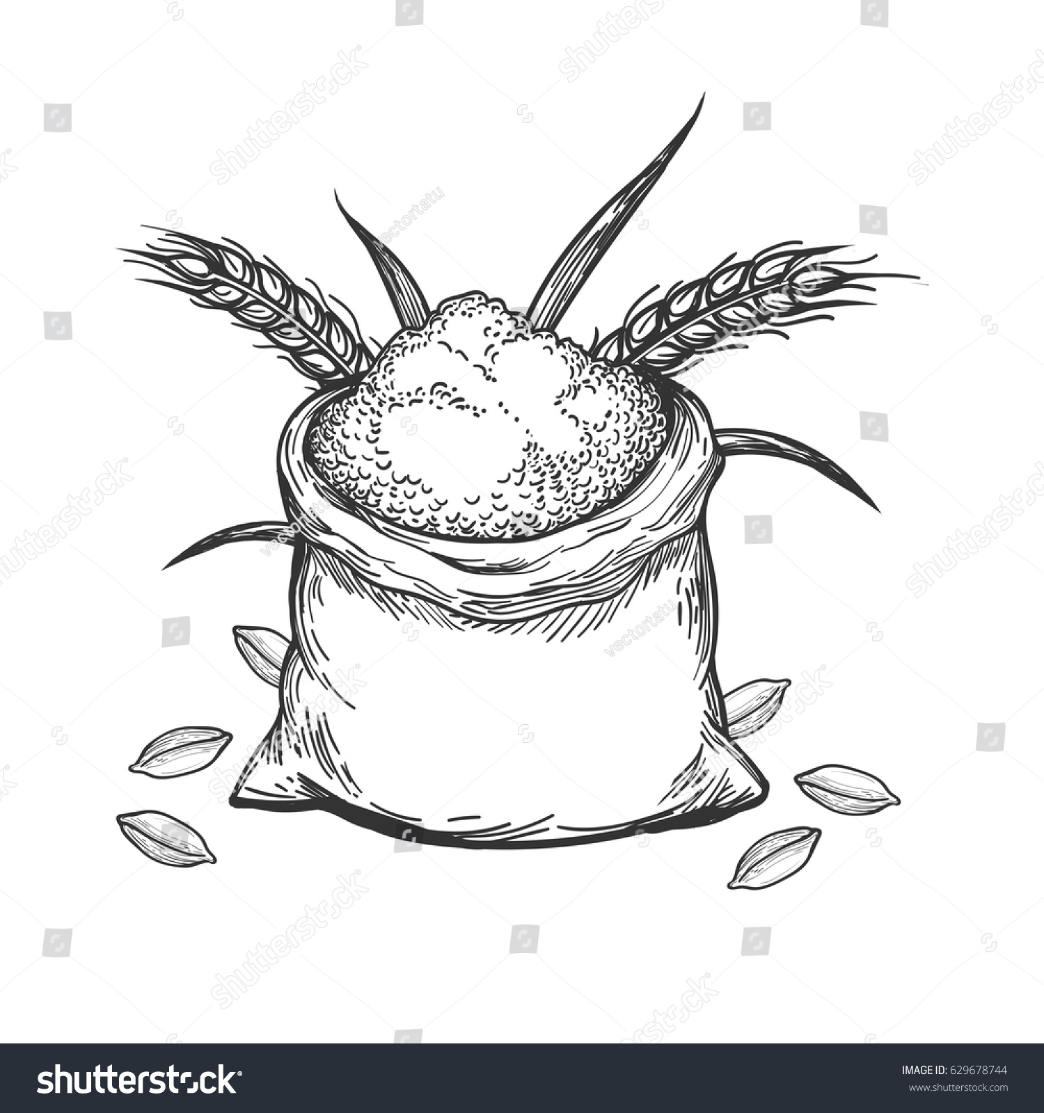 Hand Sketched Whole Bag Wheat Flour Stock Vector 629678744 ...