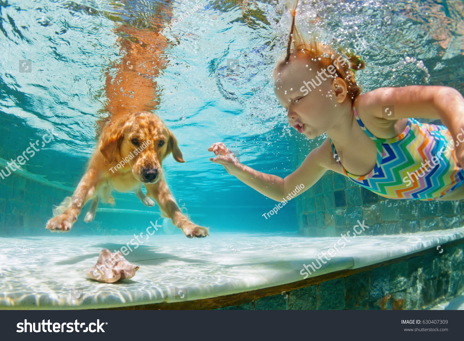 Underwater action. Smiley child play with fun, training golden retriever puppy in swimming pool - jump and dive. Active water games with family pet, popular dog breed like companion on summer vacation #630407309
