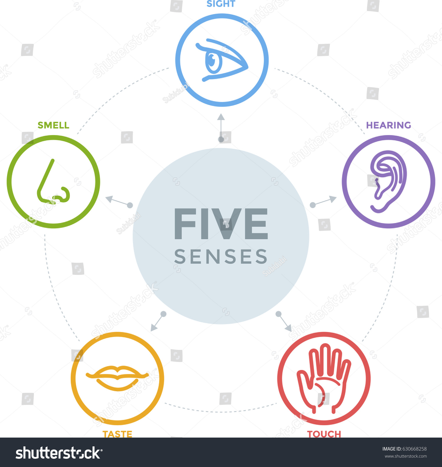 Five senses complex line icons mind 630668258 for 5 senses in architecture