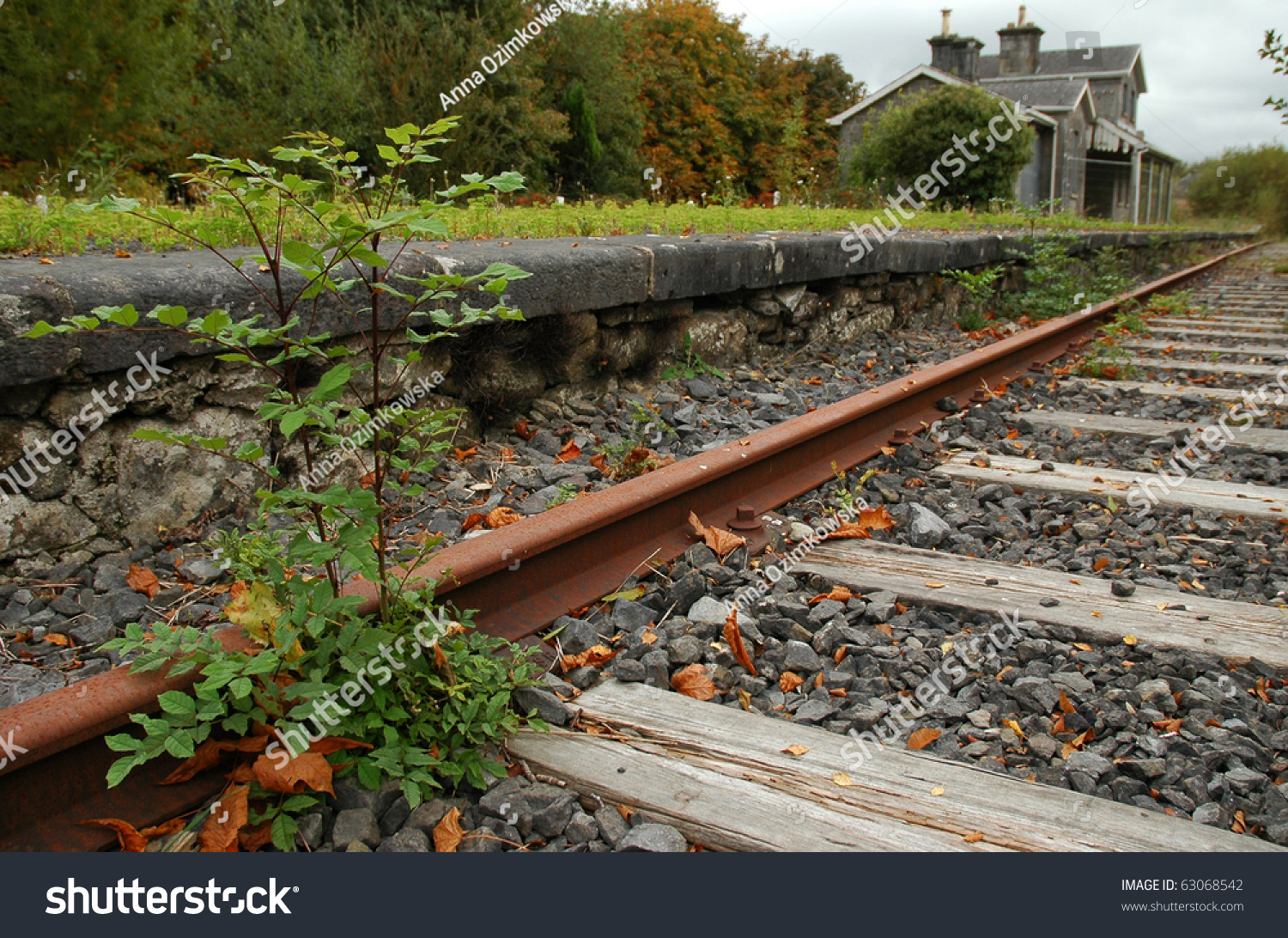 Old Abandoned Railway Station Adare Co Stock Photo Edit Now