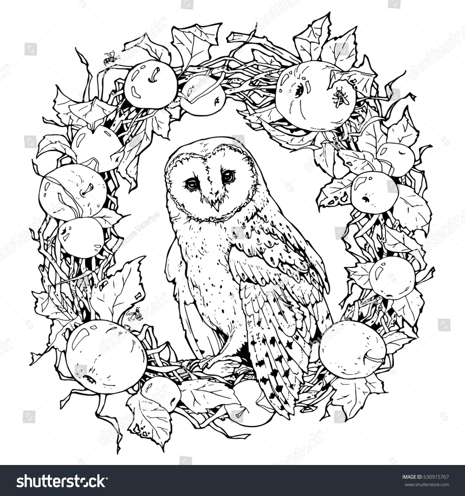 Hand Drawn Decorative Illustration Barn Owl Stock Vector 630915767 ...