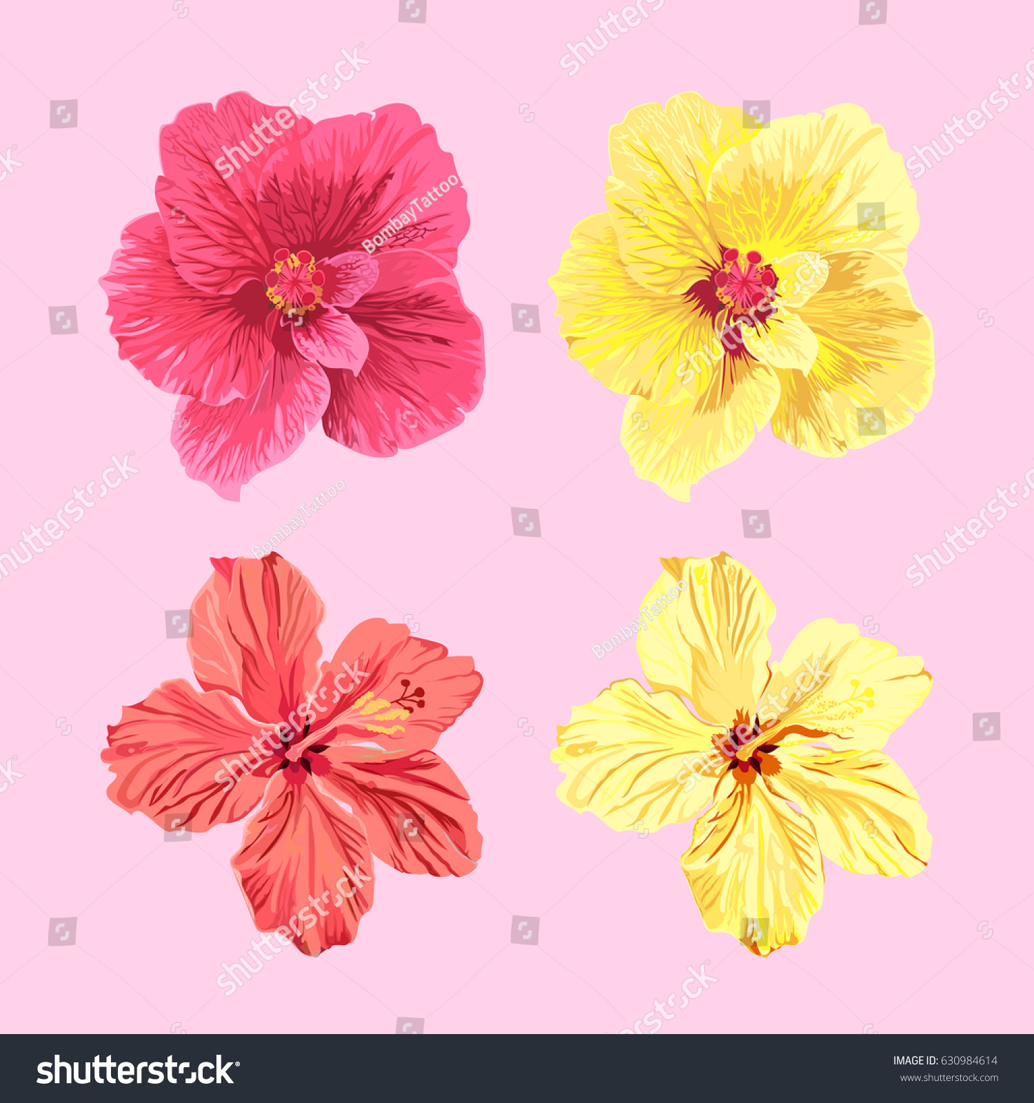 Vector Set Jamaica Flowers Four Different Stock Vector Royalty Free