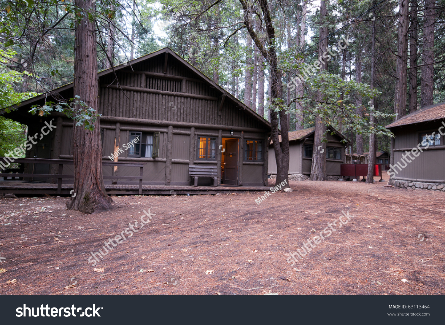 Wooden cabin in the woods with bear scratches on a beam for Curry village cabins yosemite