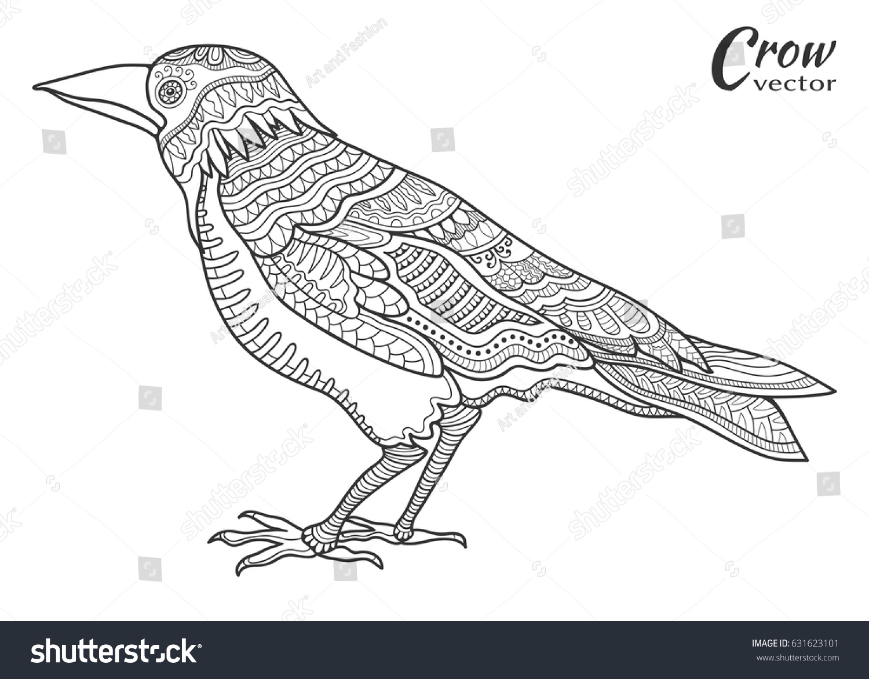 100 Mynah Bird Coloring Page Free