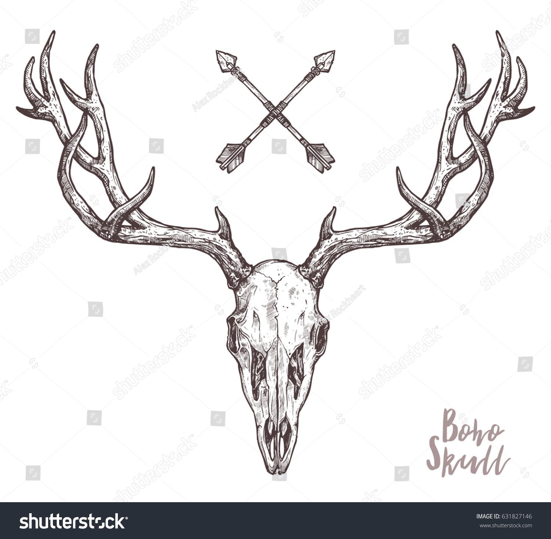 Sketch Deer Skull Tribal Arrows Boho Stock Vector 631827146 ...