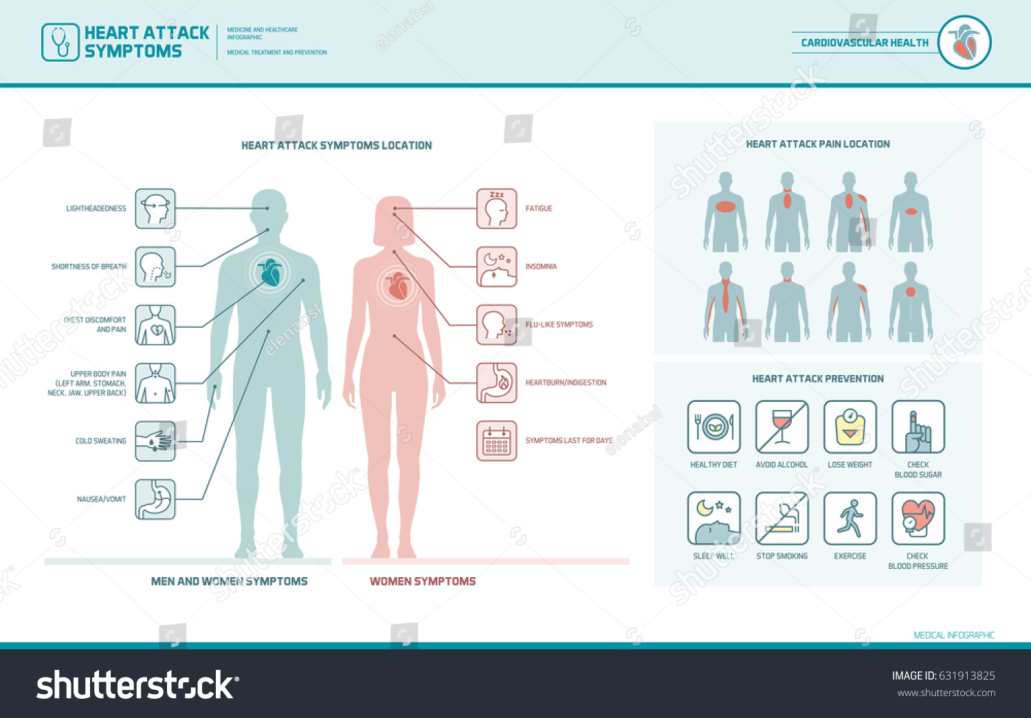 Heart attack symptoms on men women em vetor stock 631913825 heart attack symptoms on men and women infographic pain location and prevention tips ccuart Image collections