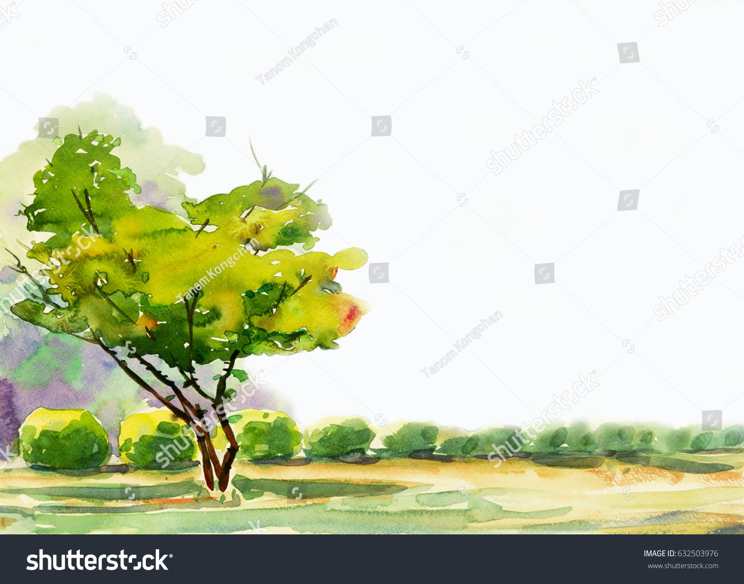 Abstract Watercolor Painting Colorful One Tree Stock Illustration ...