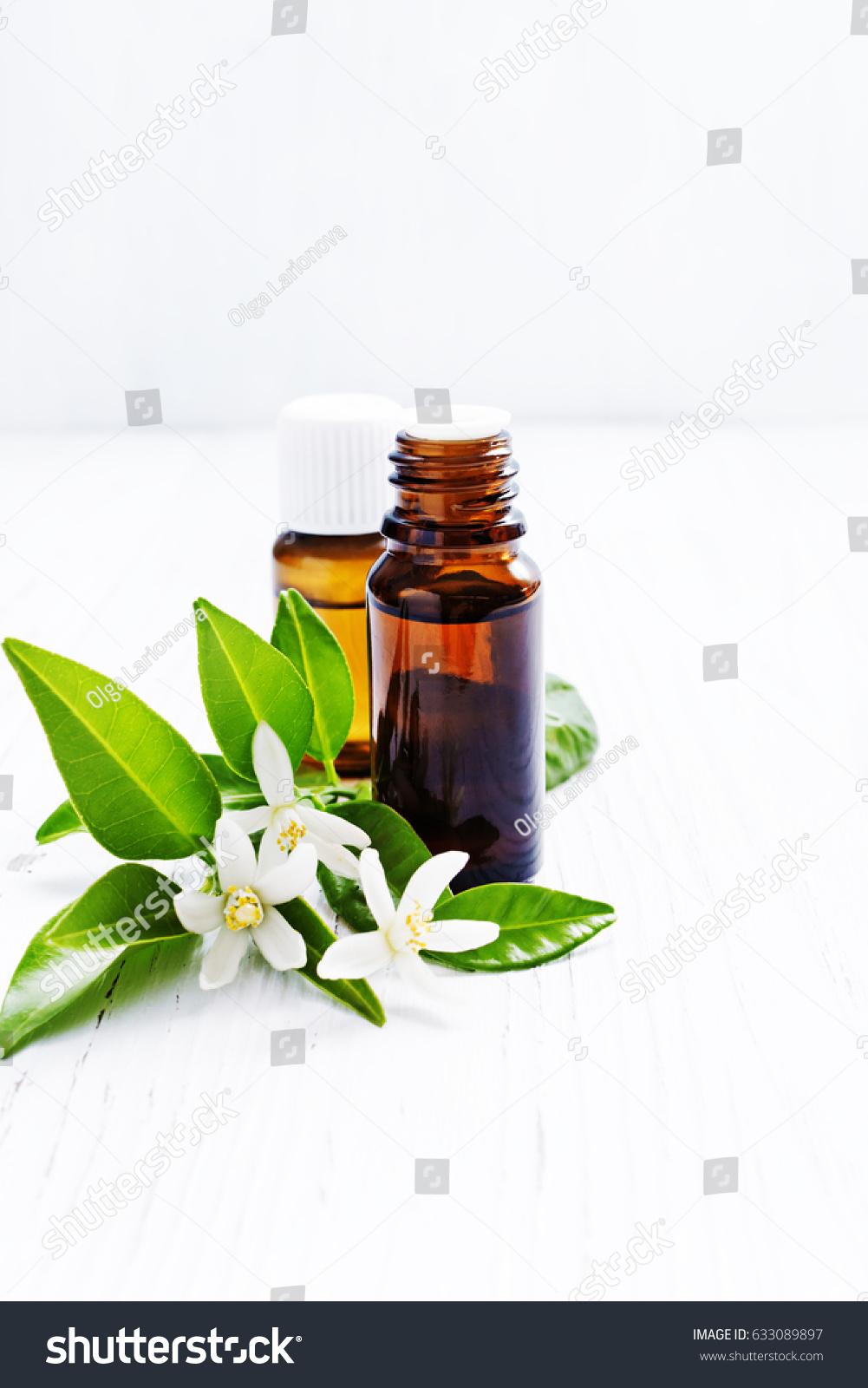 White flower analgesic balm uses image collections fresh lotus flowers white flower analgesic balm ingredients image collections flower mightylinksfo