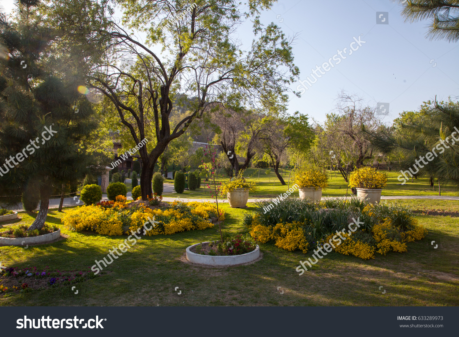 Springtime Badamwari Garden Srinagar Stock Photo (Royalty Free ...