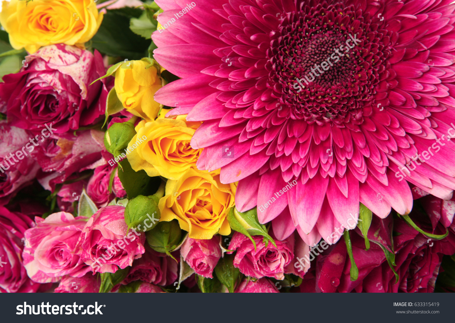 Beautiful Flowers Stock Photo Edit Now 633315419 Shutterstock