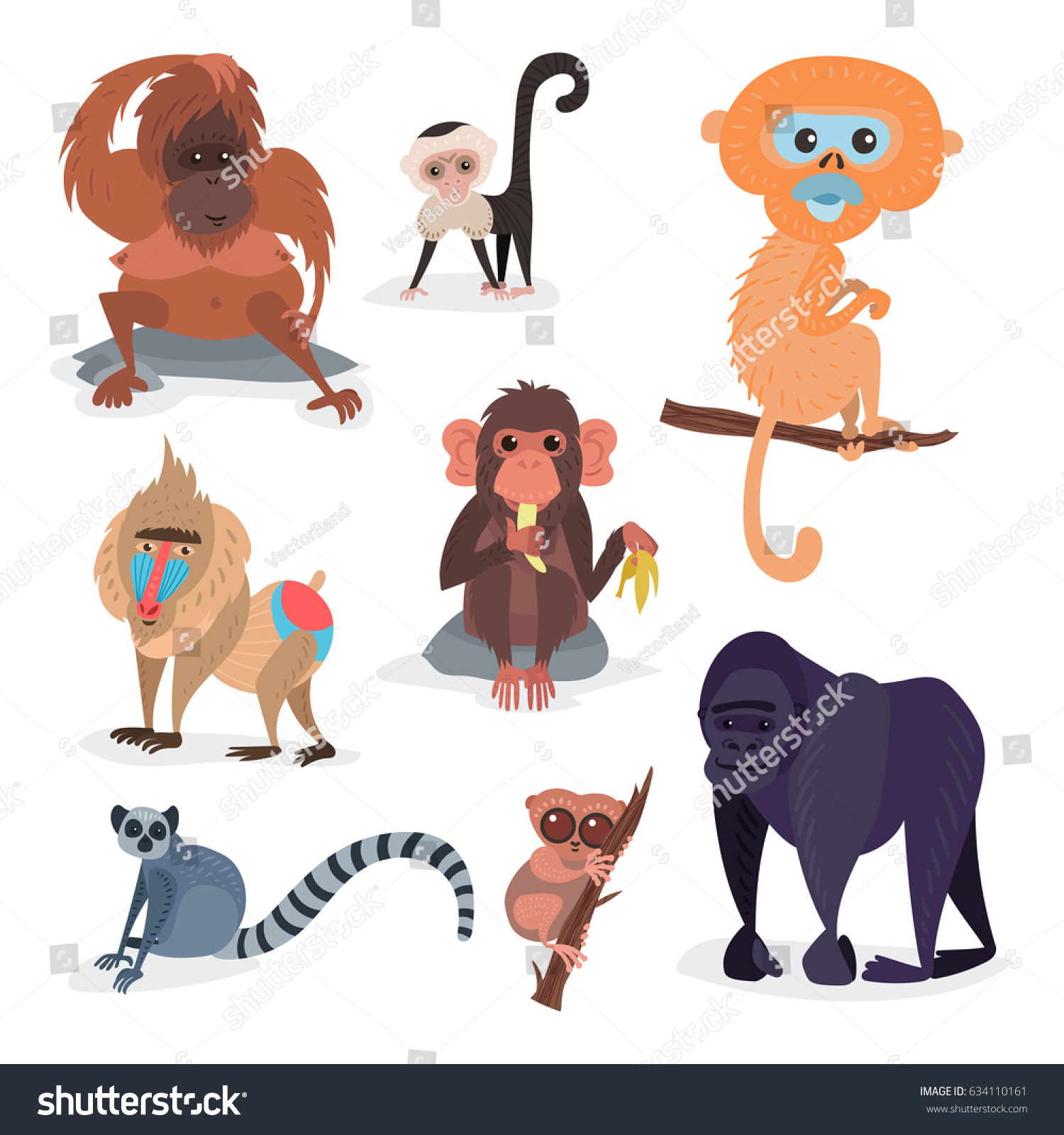 Different Breeds Monkey Character Animal Wild Stock Vector (Royalty Free)  634110161