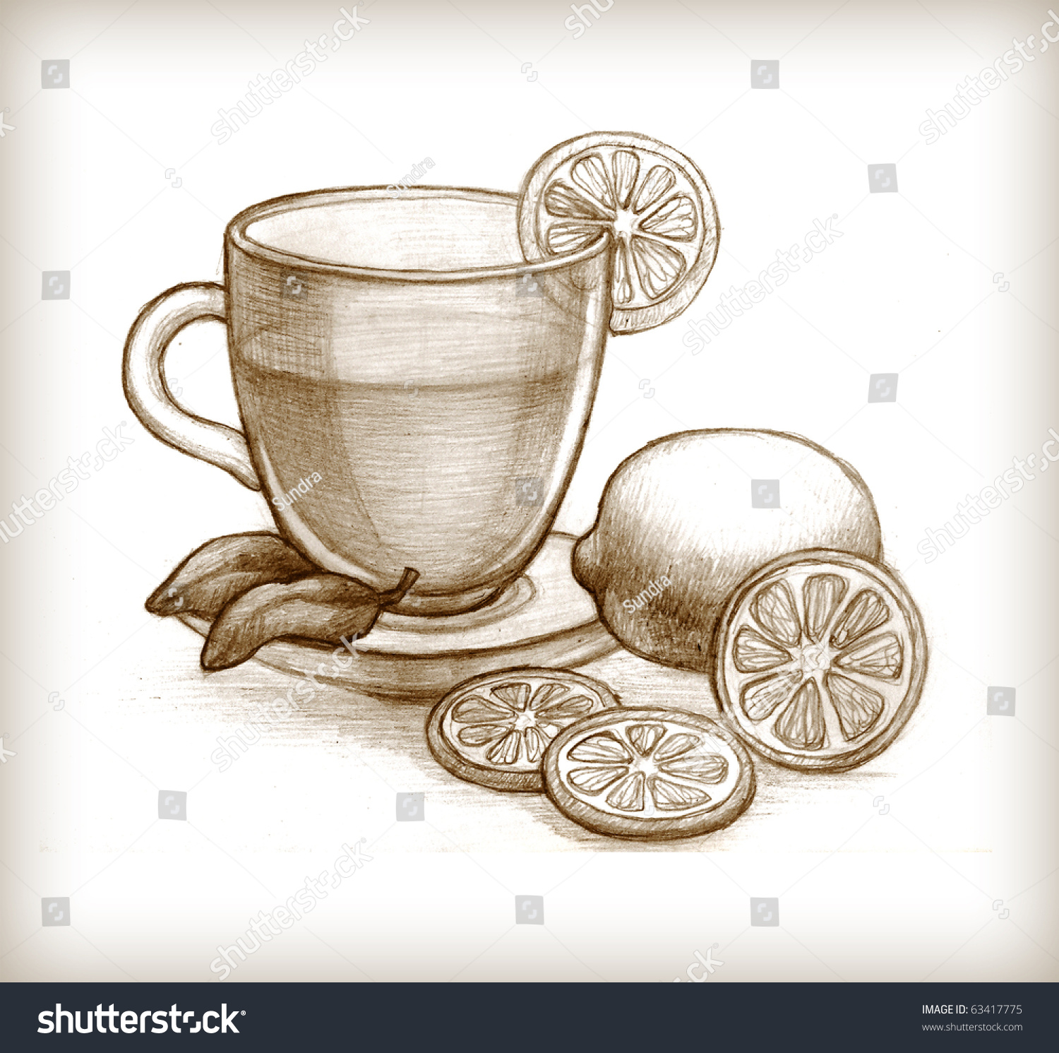 Pencil Drawing Glass Cup Tea Lemon Stock Illustration ...