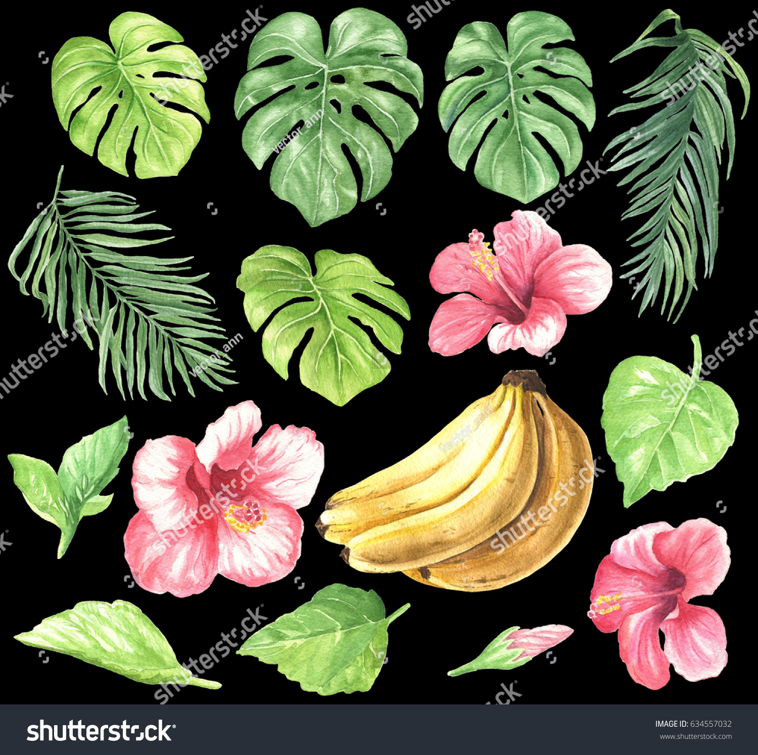 Tropical Clipart Palm Leaves Hibiscus Flowers Stock Illustration