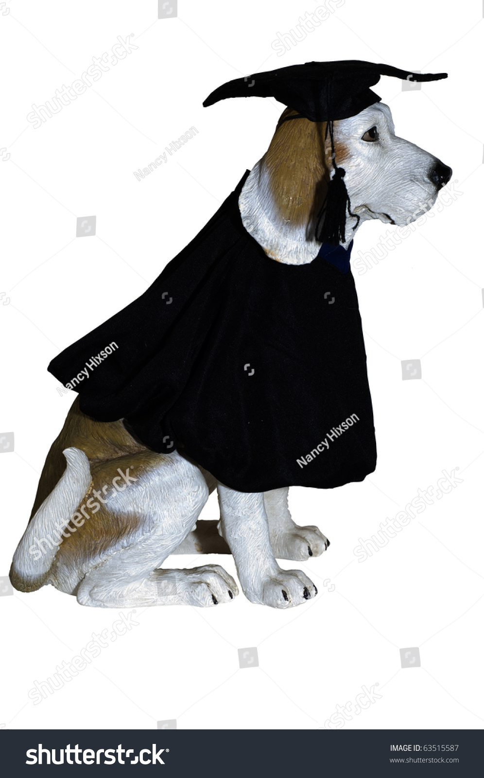 Royalty-free Dog statue dressed in black graduation… #63515587 Stock ...