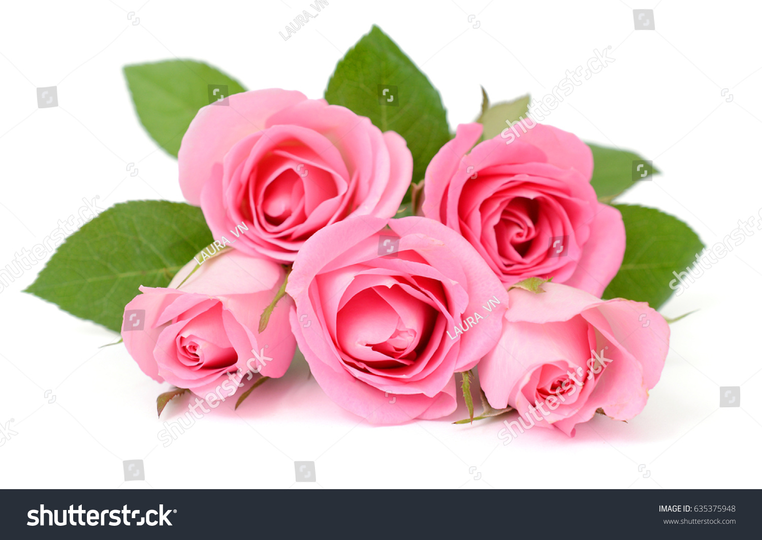 Beautiful Pink Bouquet Rose Flowers Isolated Stock Photo Edit Now