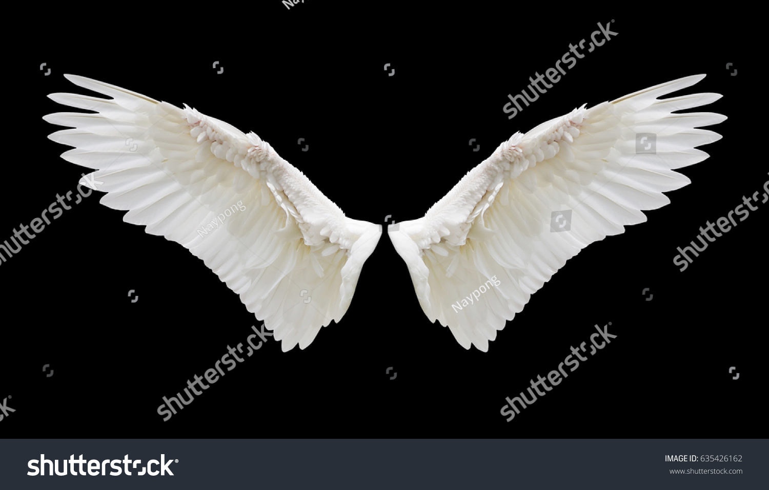 angel wings black background - photo #28