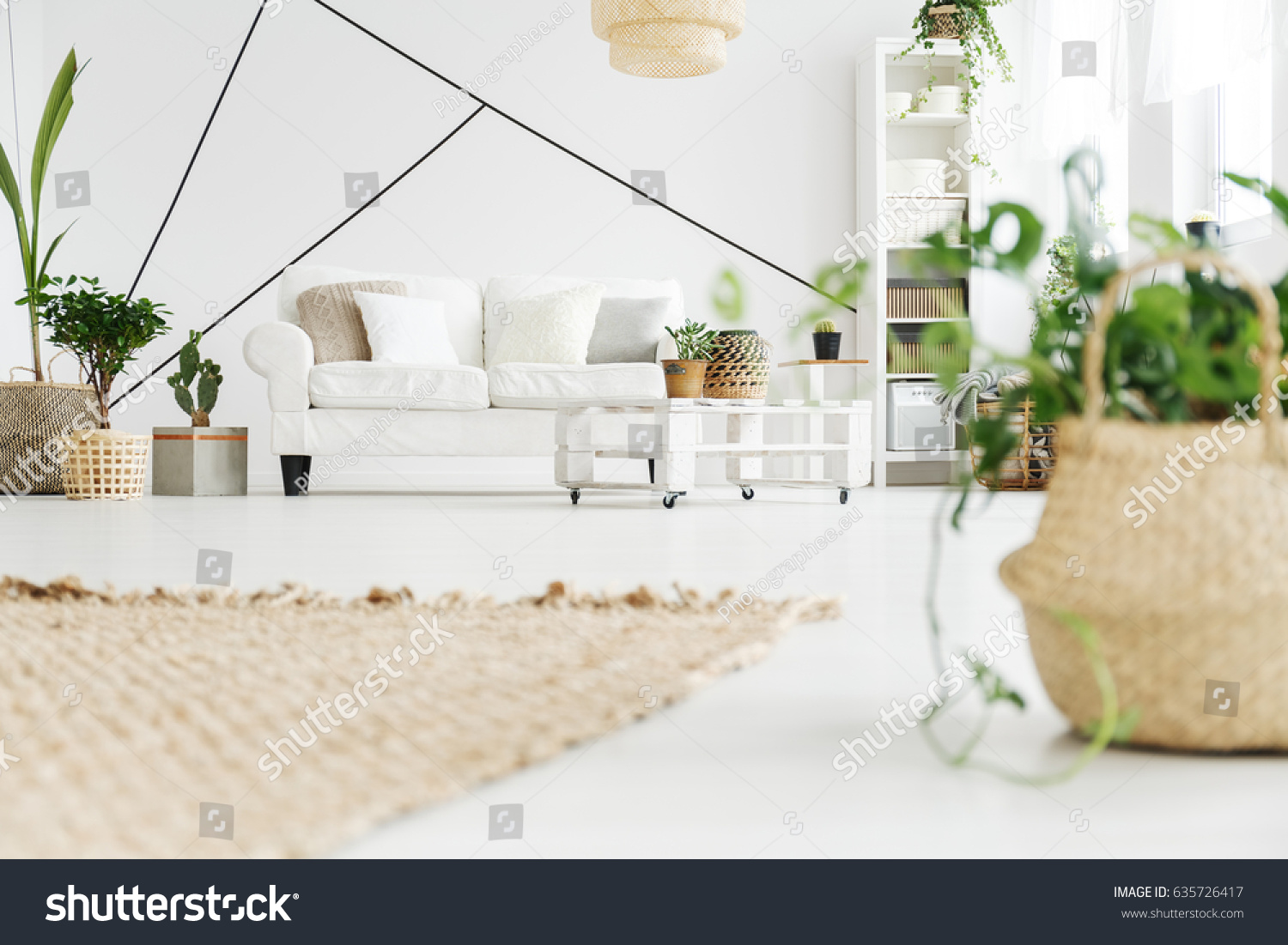 Plants White Cozy Scandinavian Style Living Stock Photo (Royalty ...