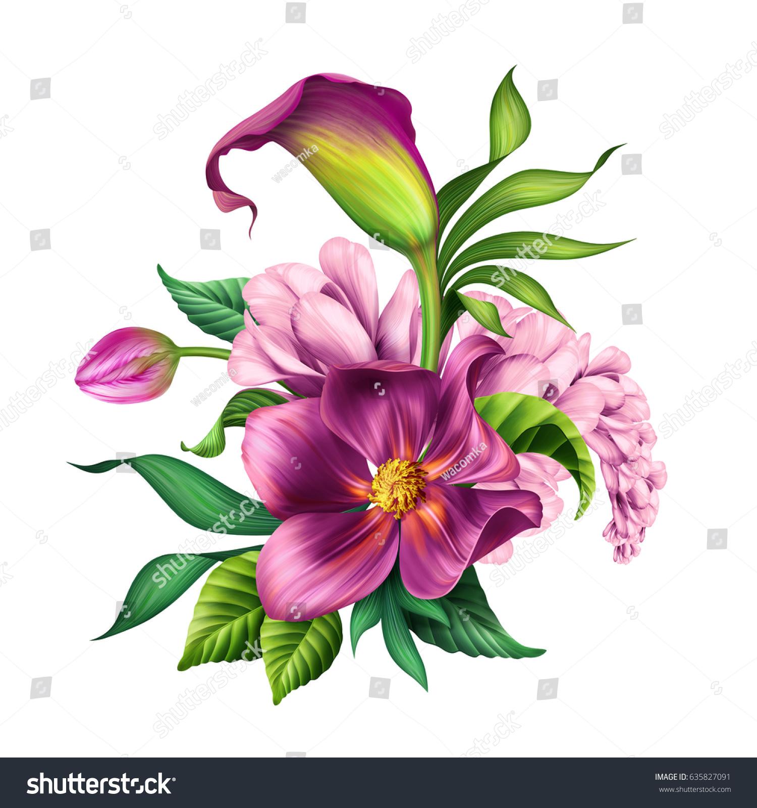 Botanical illustration beautiful tropical flowers bouquet stock botanical illustration beautiful tropical flowers bouquet arrangement floral clip art isolated on white izmirmasajfo