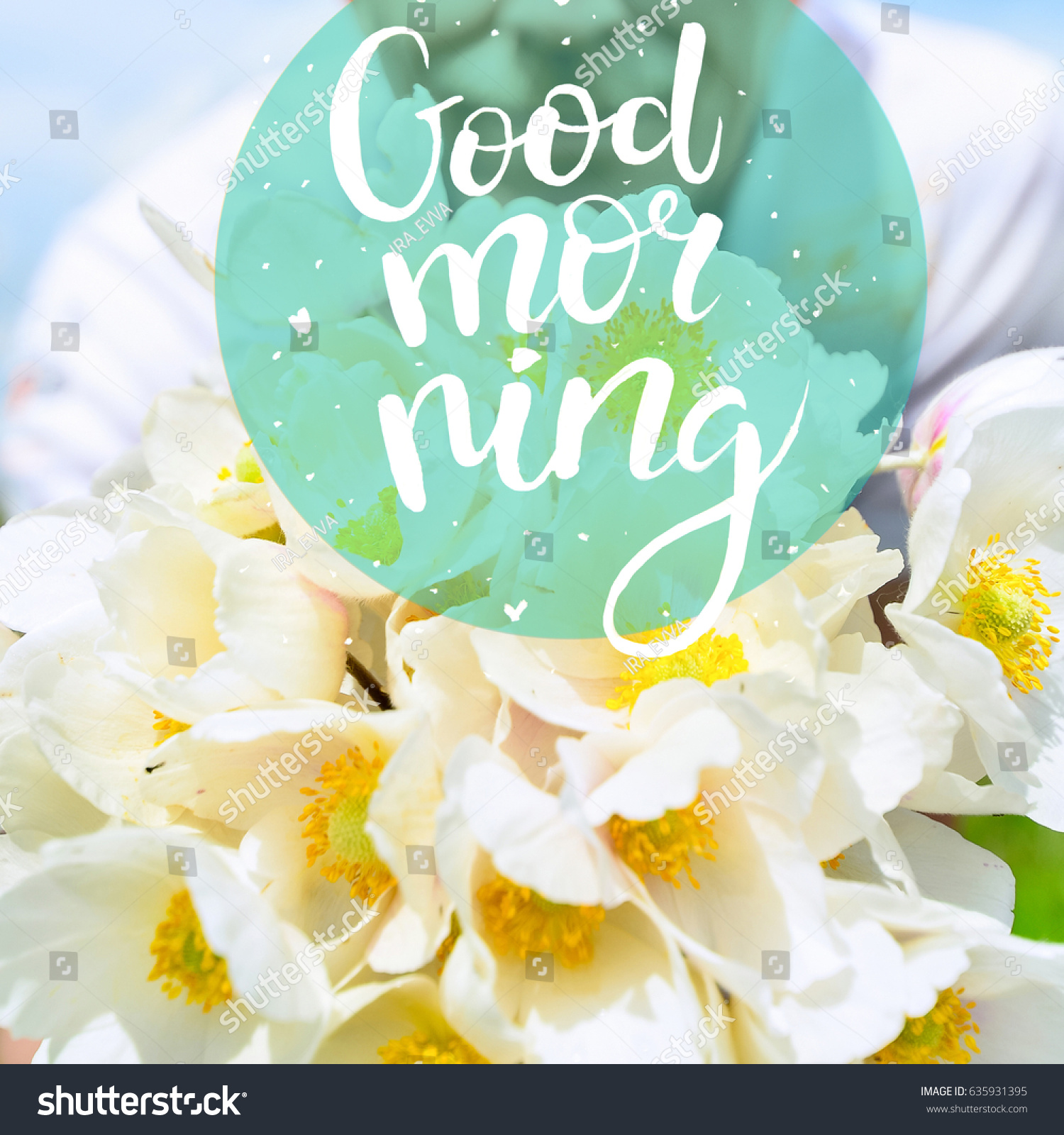 Concept good morning romantic man bouquet stock photo edit now the concept is good morning romantic man with a bouquet of white flowers on a mightylinksfo