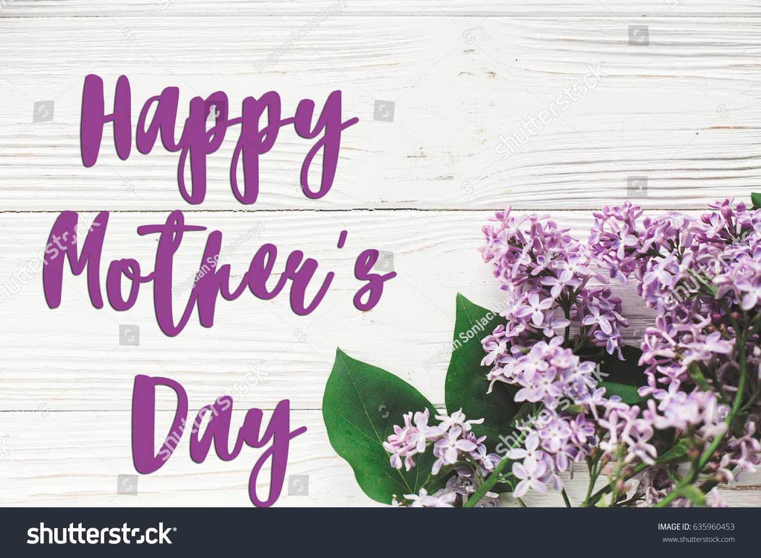Happy mothers day text sign greeting stock photo 635960453 happy mothers day text sign greeting card gentle purple lilac flowers on white rustic kristyandbryce Choice Image