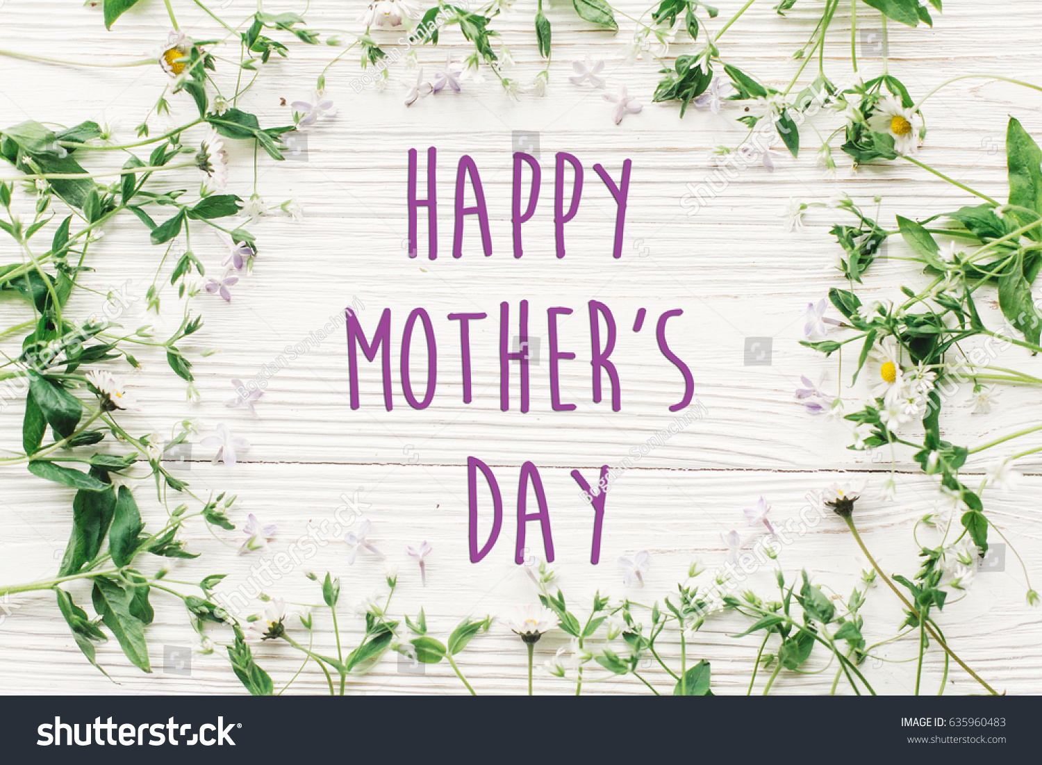 Happy mothers day text sign greeting stock photo 635960483 happy mothers day text sign greeting card gentle pink lilac flowers and daisy frame kristyandbryce Choice Image