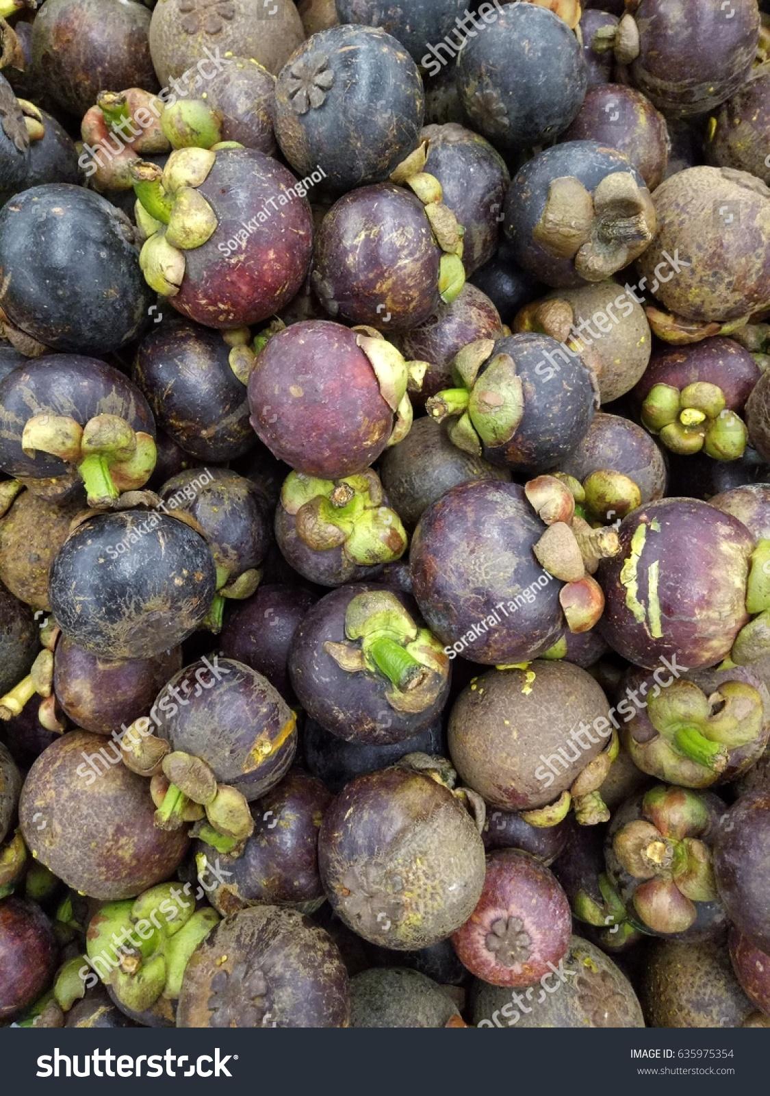 Mangosteen Fruit That Thais Like Eat Stock Photo Edit Now 635975354