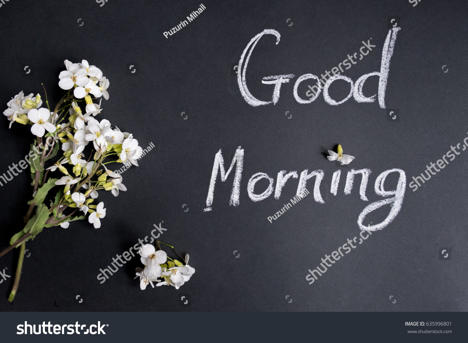 Text Good Morning White Flowers On Stock Photo Edit Now 635996801