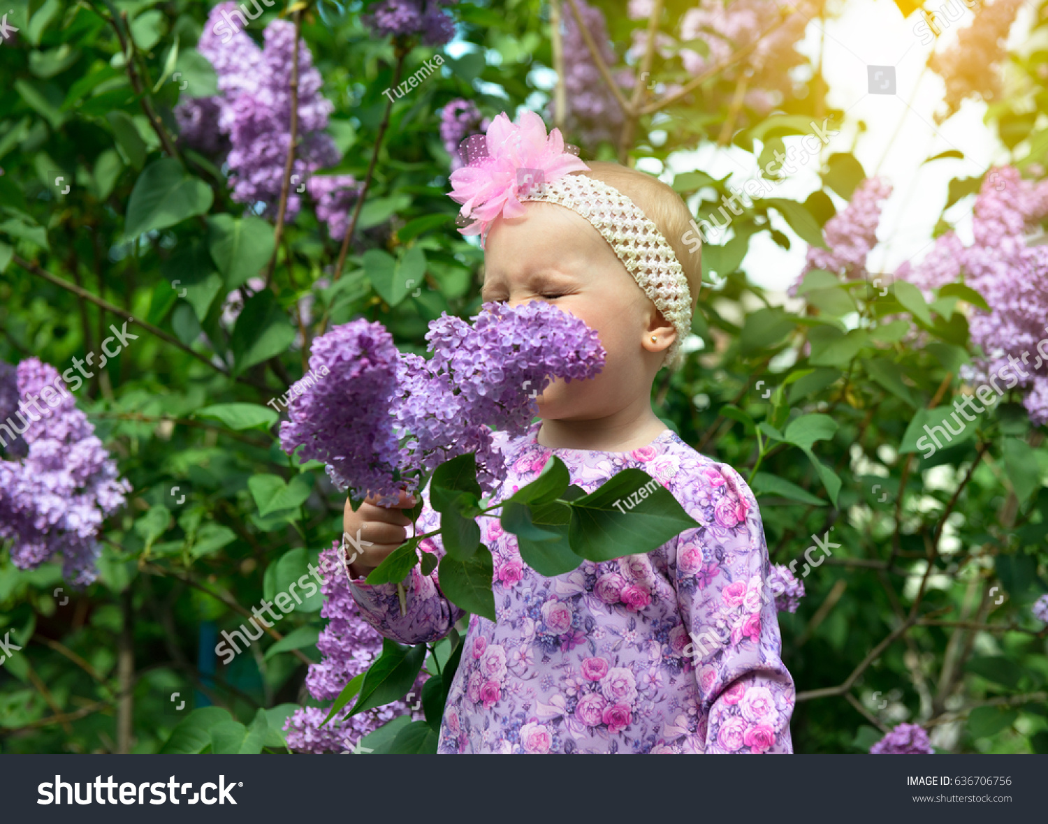 Beautiful Little Girl Smells Lilac Flowers Stock Photo Edit Now