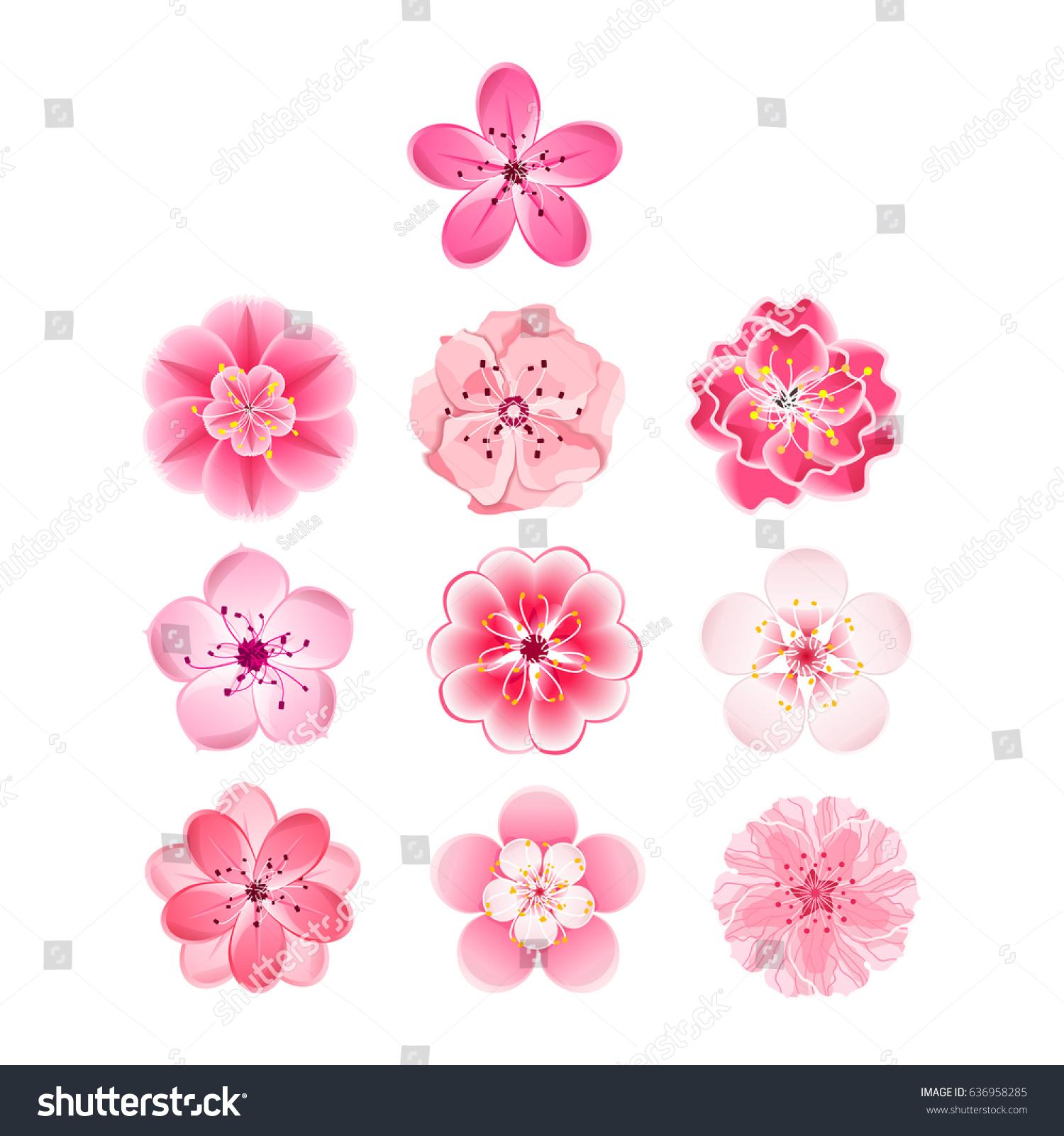 Isolated Flowers Sakura Set Cartoon Pink Stock Illustration