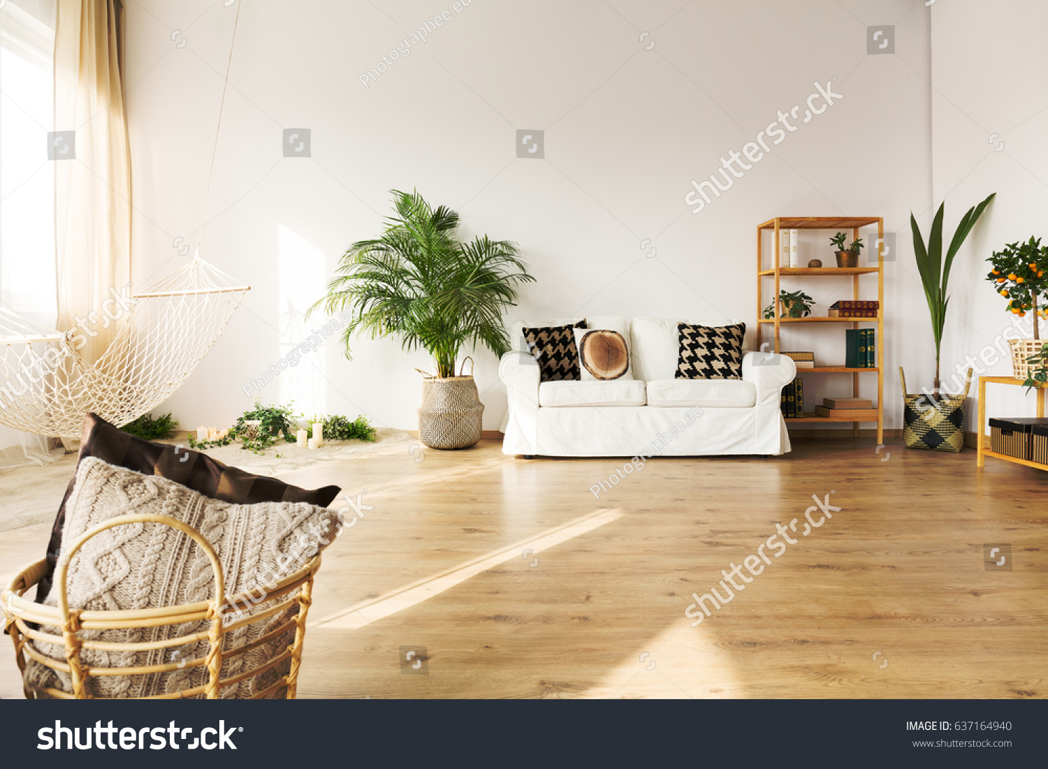 Perfect Living Room With Sofa, Hammock, Bookcase, Plant, Hardwood Floor