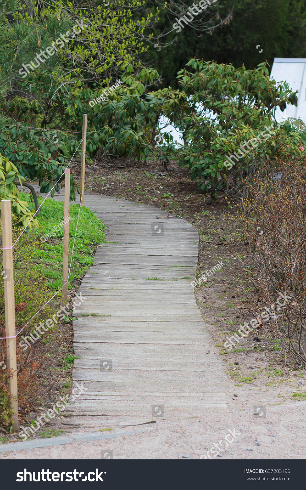 Free Images : tree, nature, path, pathway, grass, outdoor, sky ...