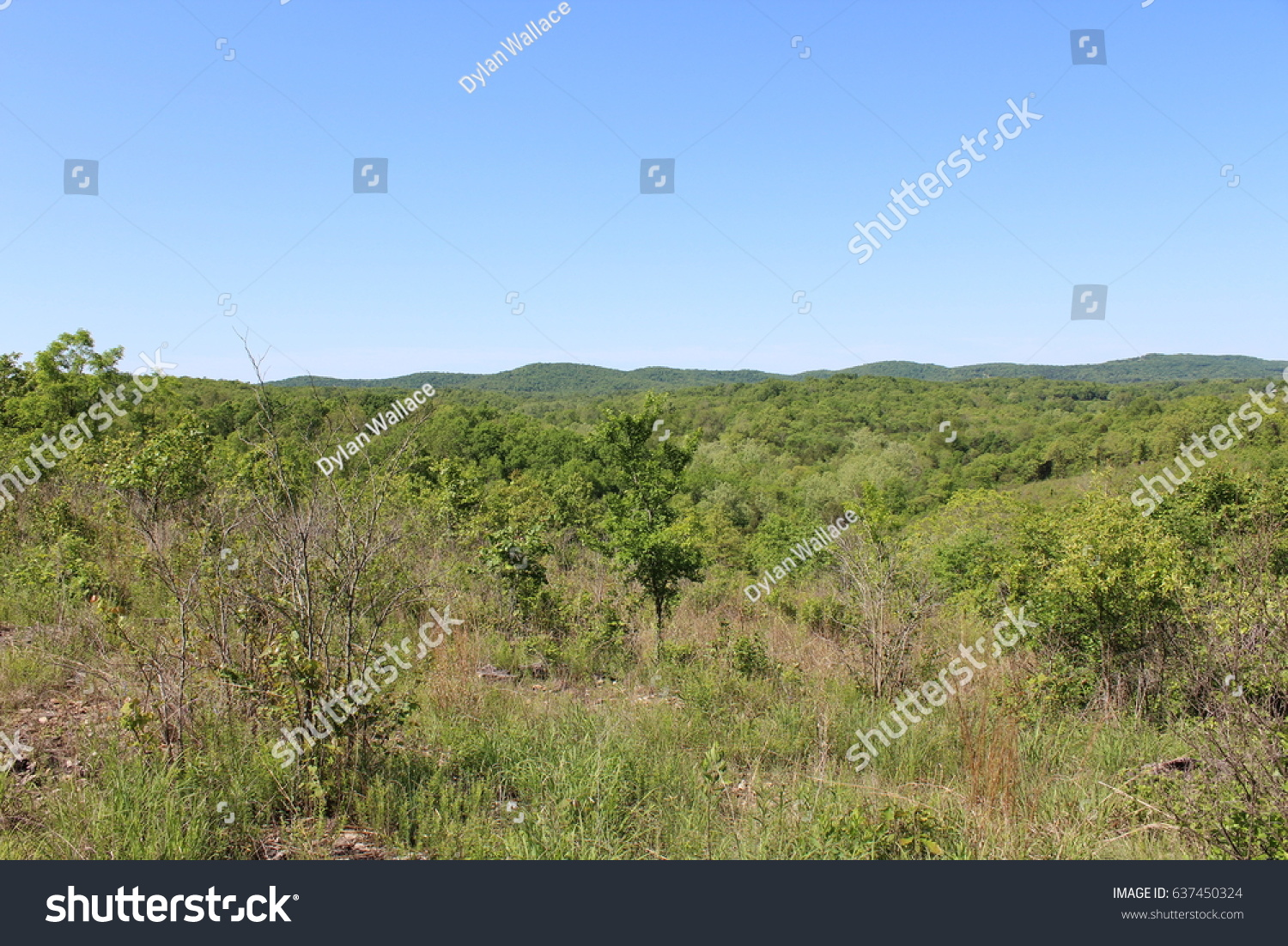 Hilltop view from a Southwest Missouri… Stock Photo