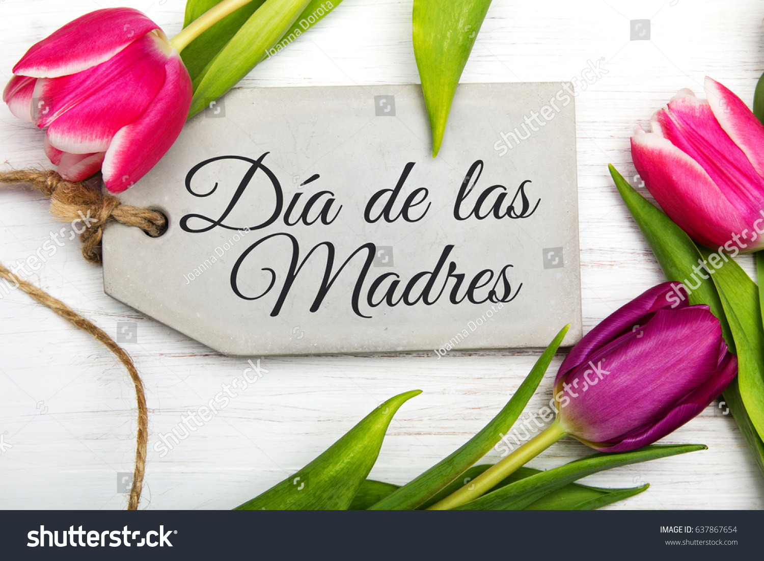 Mothers day card spanish words happy stock photo edit now mothers day card with spanish words happy mothers day and blue flowers frame on m4hsunfo