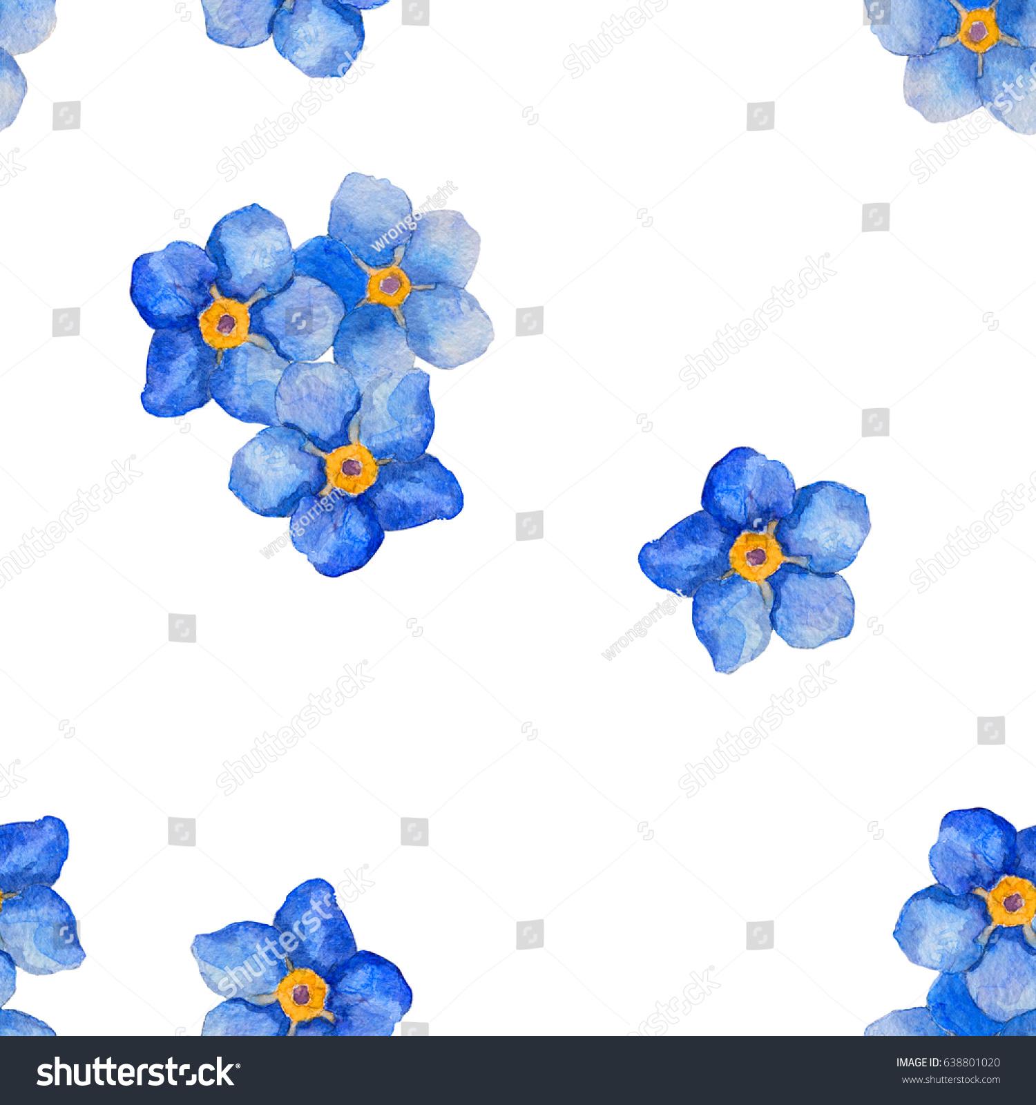 Blue Forget Me Not Bindweed Spring Stock Illustration 638801020