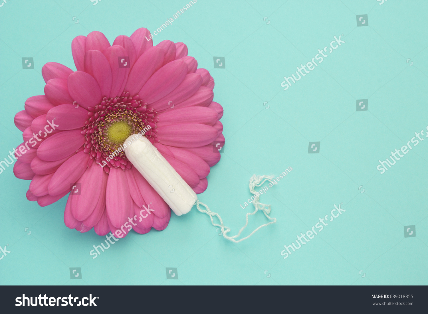 Menstruation Tampon Pink Gerbera Daisy Flower Stock Photo (Royalty ...