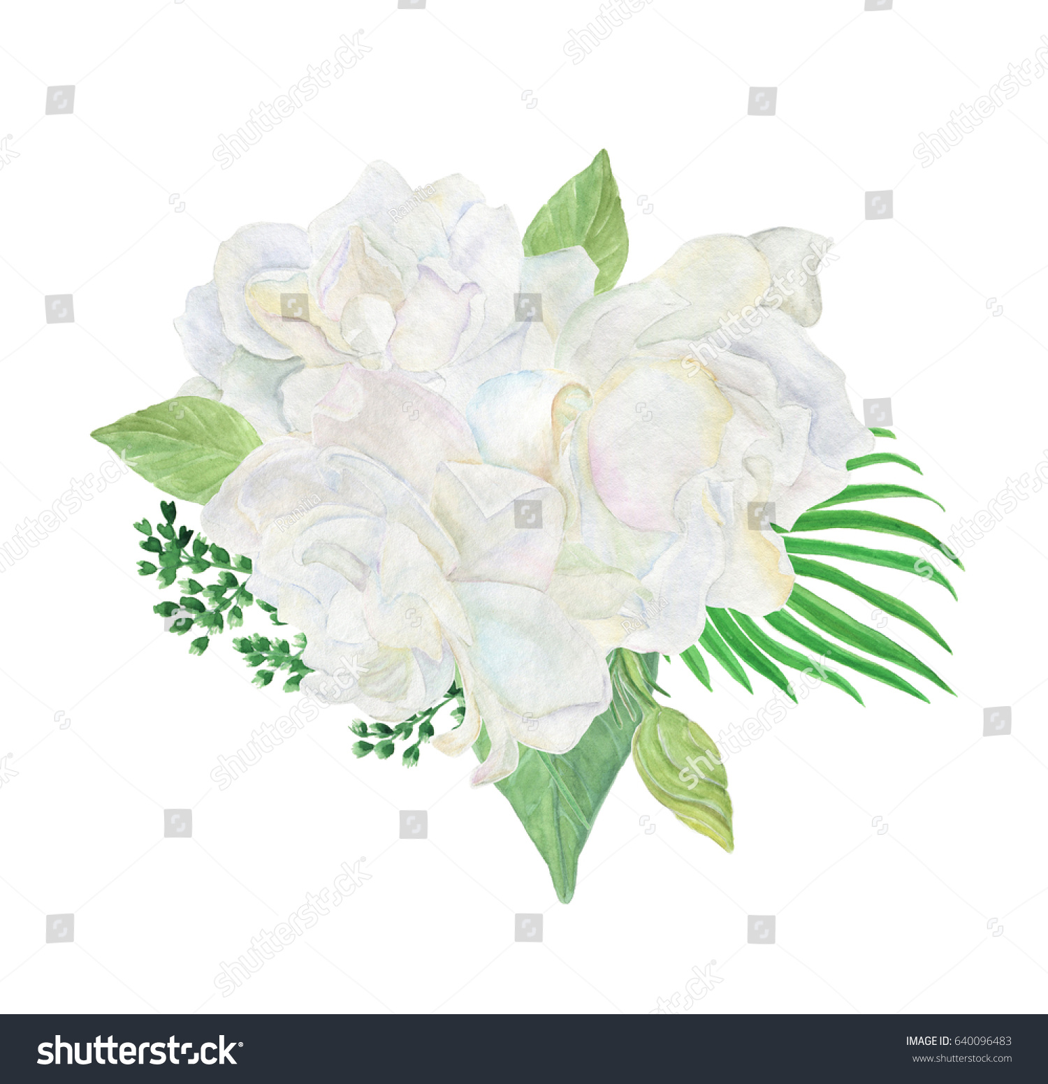 Colorful Floral Collection Leaves White Gardenia Stock Illustration