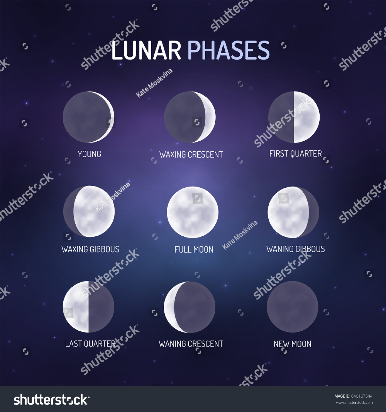 Lunar Phases Visual Teaching Material On Stock Vector Royalty Free Diagram Astronomy Illustration