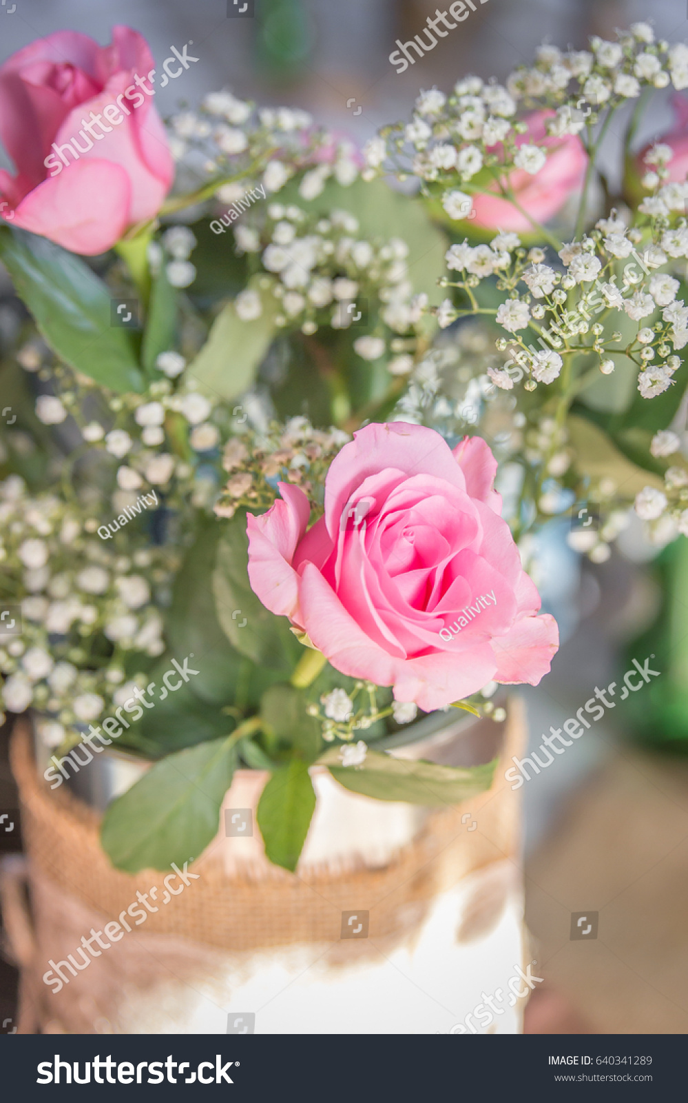Pink Roses White Gyp Flowers Tin Stock Photo Edit Now 640341289