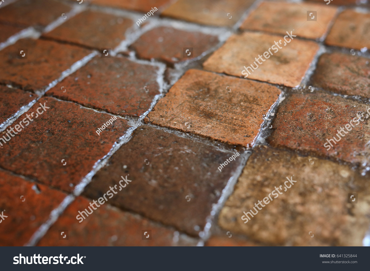 Waxed Antique French Terracotta Floor Tiles Stock Photo