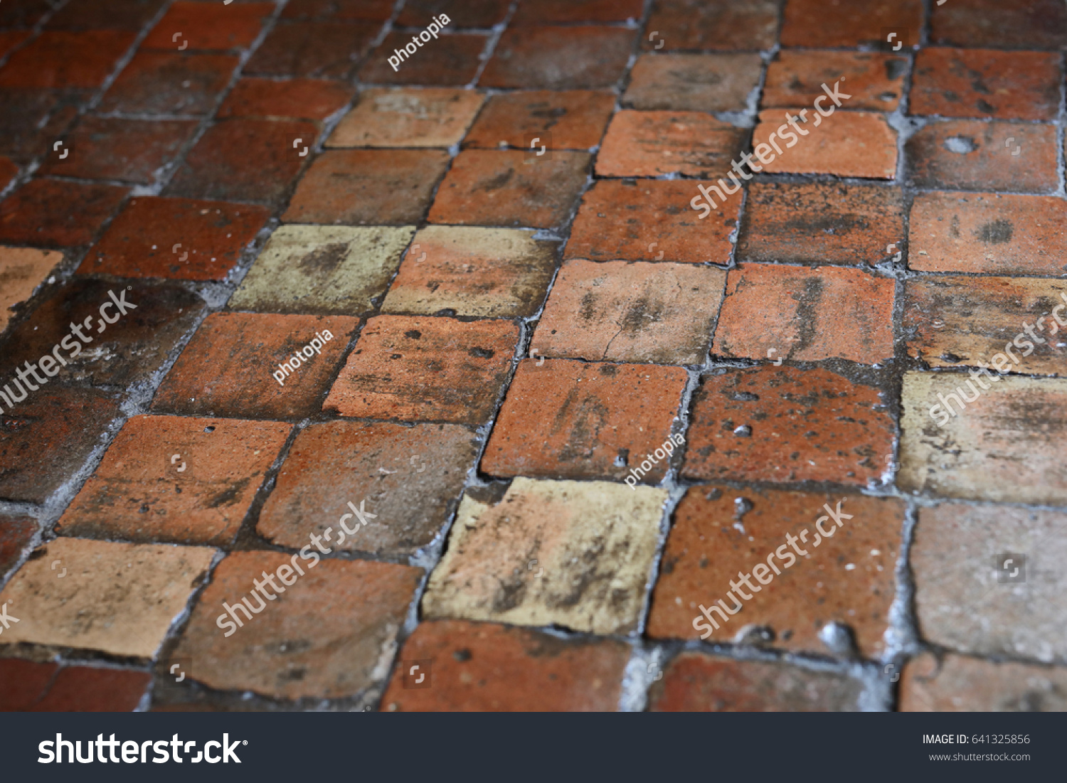 Waxed Antique French Terracotta Floor Tiles Stock Photo Edit Now