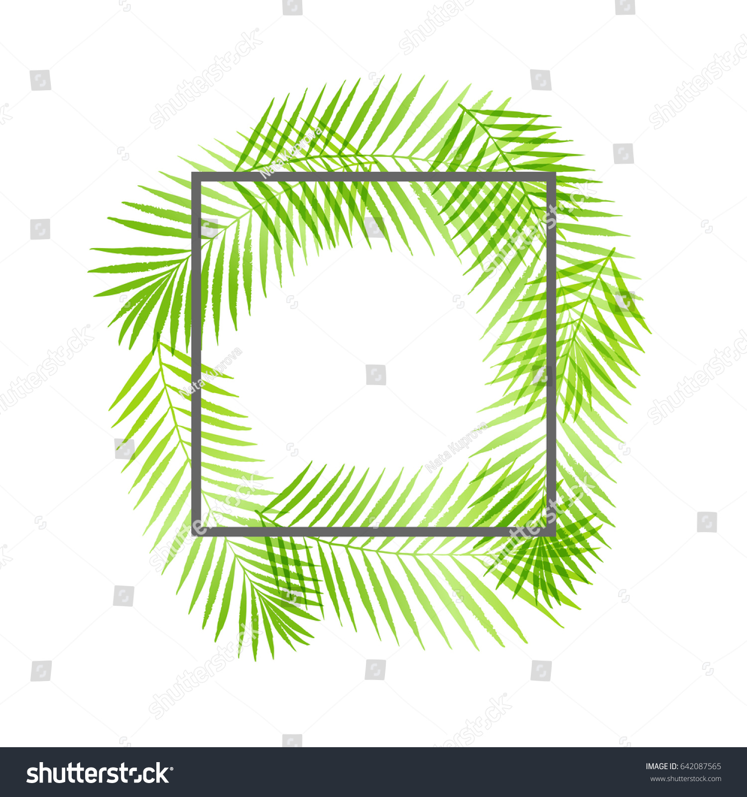 summer tropical palm tree leaves border stock vector 642087565