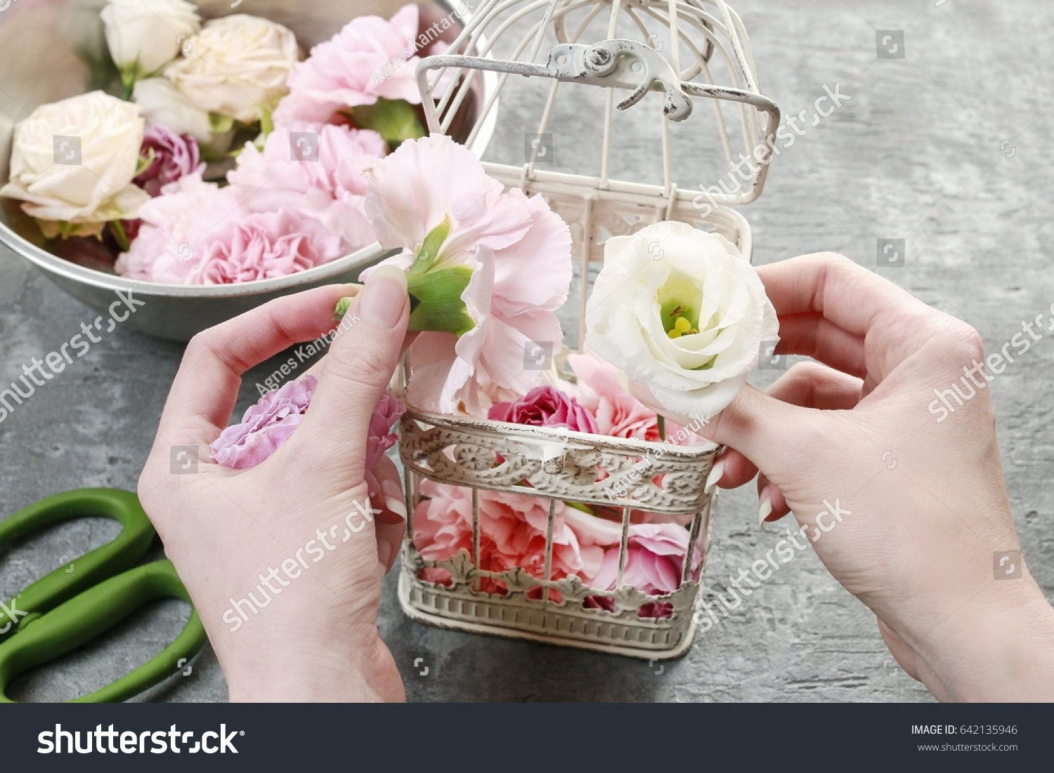 Florist work how make wedding decoration stock photo 642135946 florist at work how to make wedding decoration with vintage birdcage and fresh flowers izmirmasajfo Gallery