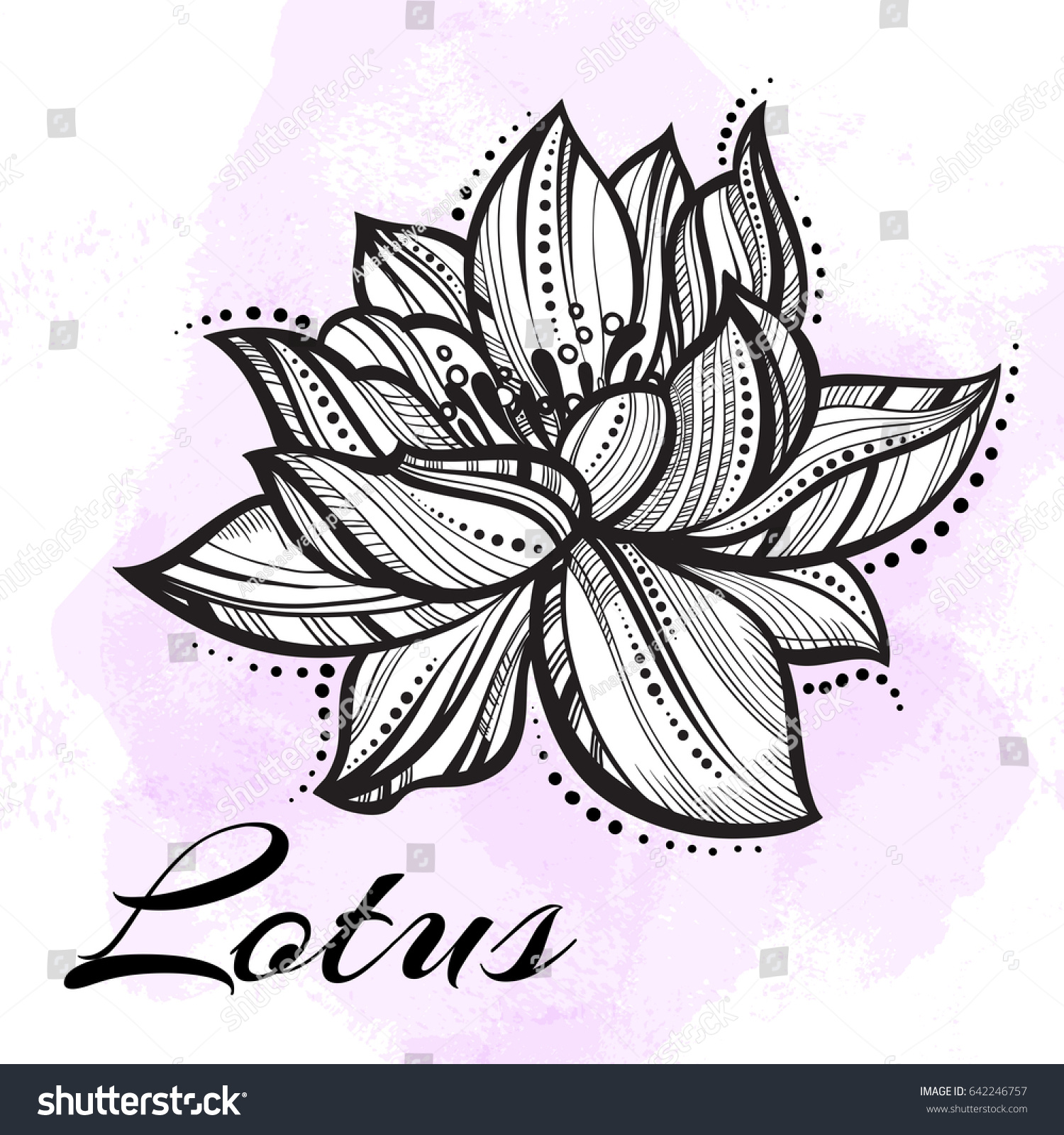 Vector High Detailed Beautiful Lotus Flower Stock Vector Royalty