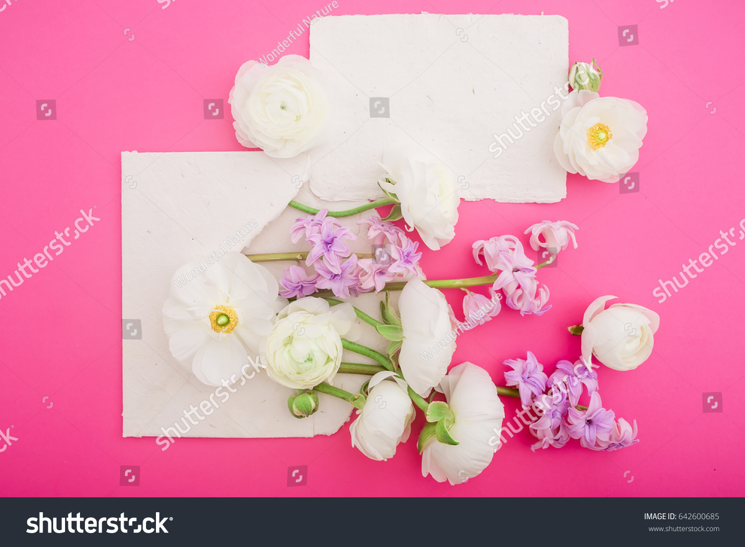 Paper Calligraphy Cards And Envelope With White Flowers On Pink