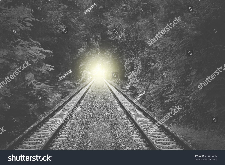 Train Rail Way Forest Light Nature Background Dark Outdoor