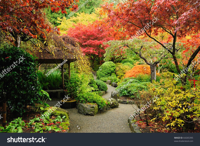 Autumnal Japanese Garden Victoria Vancouver Island Stock Photo 64265395 - Shutterstock