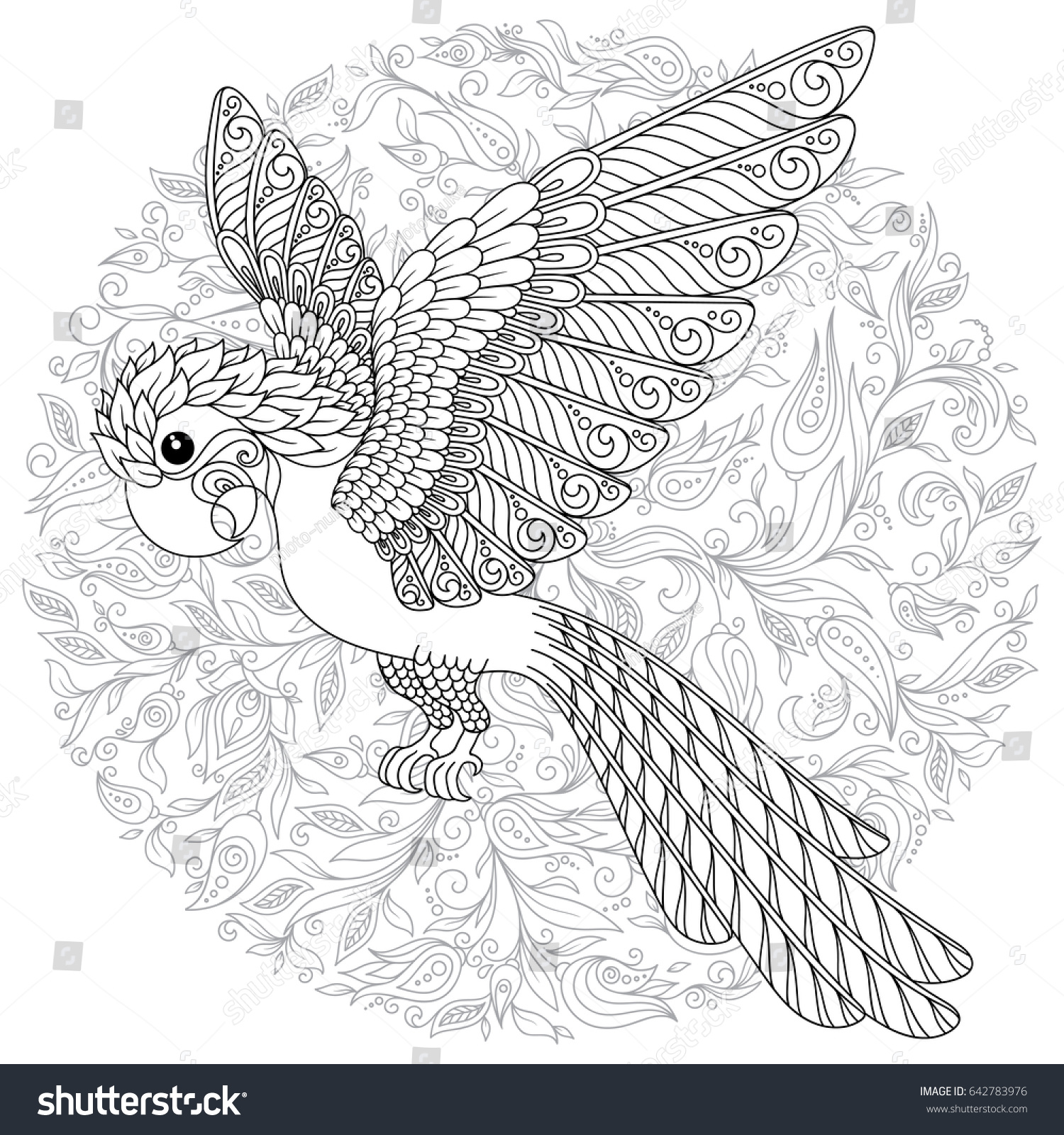 Tropical Bird Vector Illustration Coloring Book For Adult And Older Children