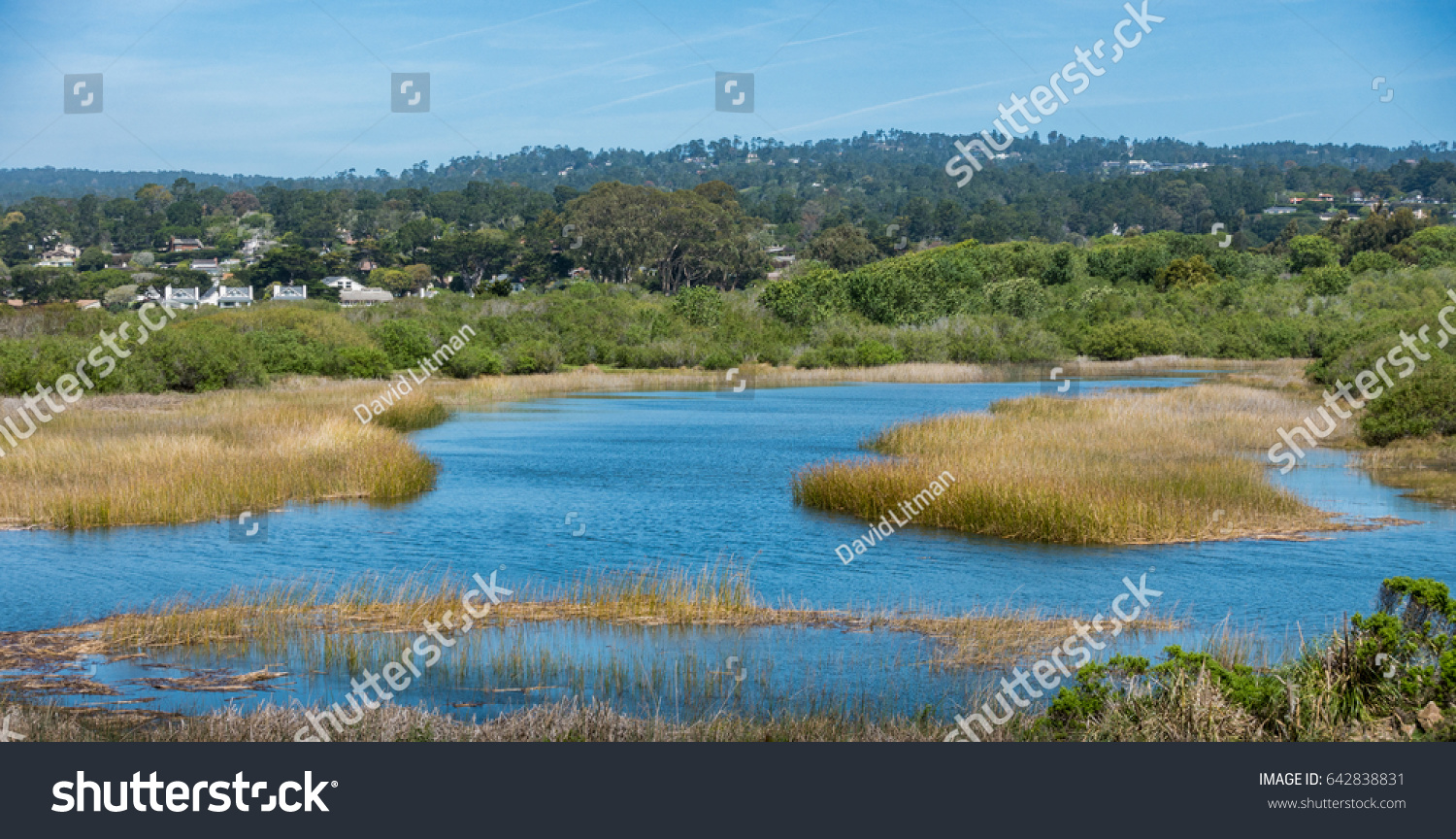 Marshland at the mouth of the Carmel Valley river basin in Carmel by the Sea, California.