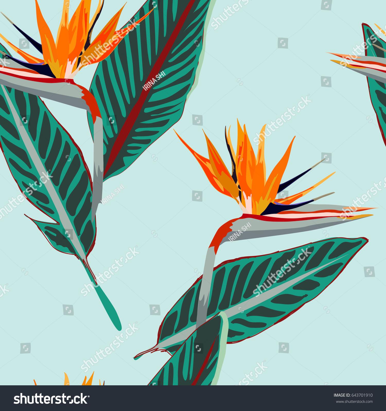 Royal strelitzia tropical flowers bird paradise stock vector tropical flowers bird of paradise flower beautiful seamless vector floral jungle buycottarizona