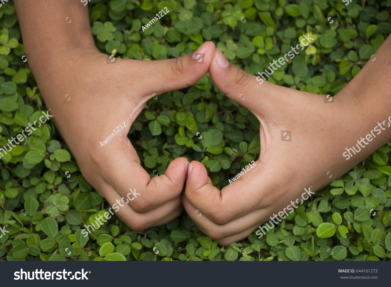 Little Boy Hands Forming Heart I Stock Photo 644101273 - Shutterstock
